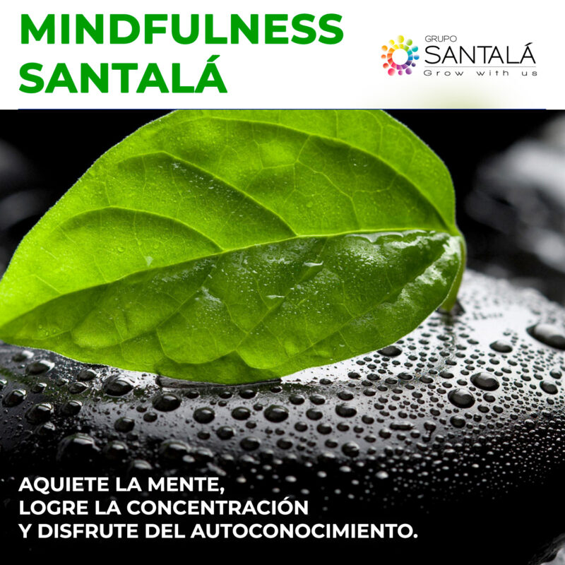 Mindfulness, Coaching, Formación, Buenos Aires, Start up
