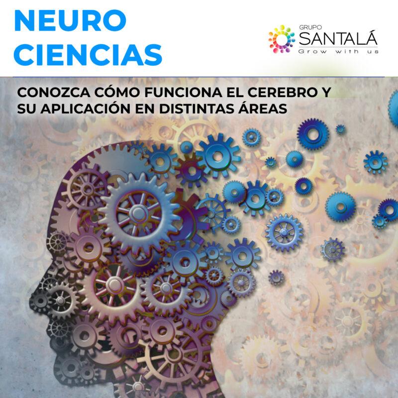 Neurociencias, Neuronegocios, Coaching, Formación, Buenos Aires